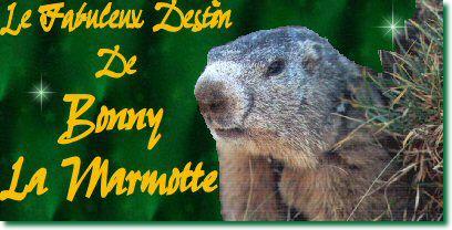 Le fabuleux destin de Bonny la marmotte !!